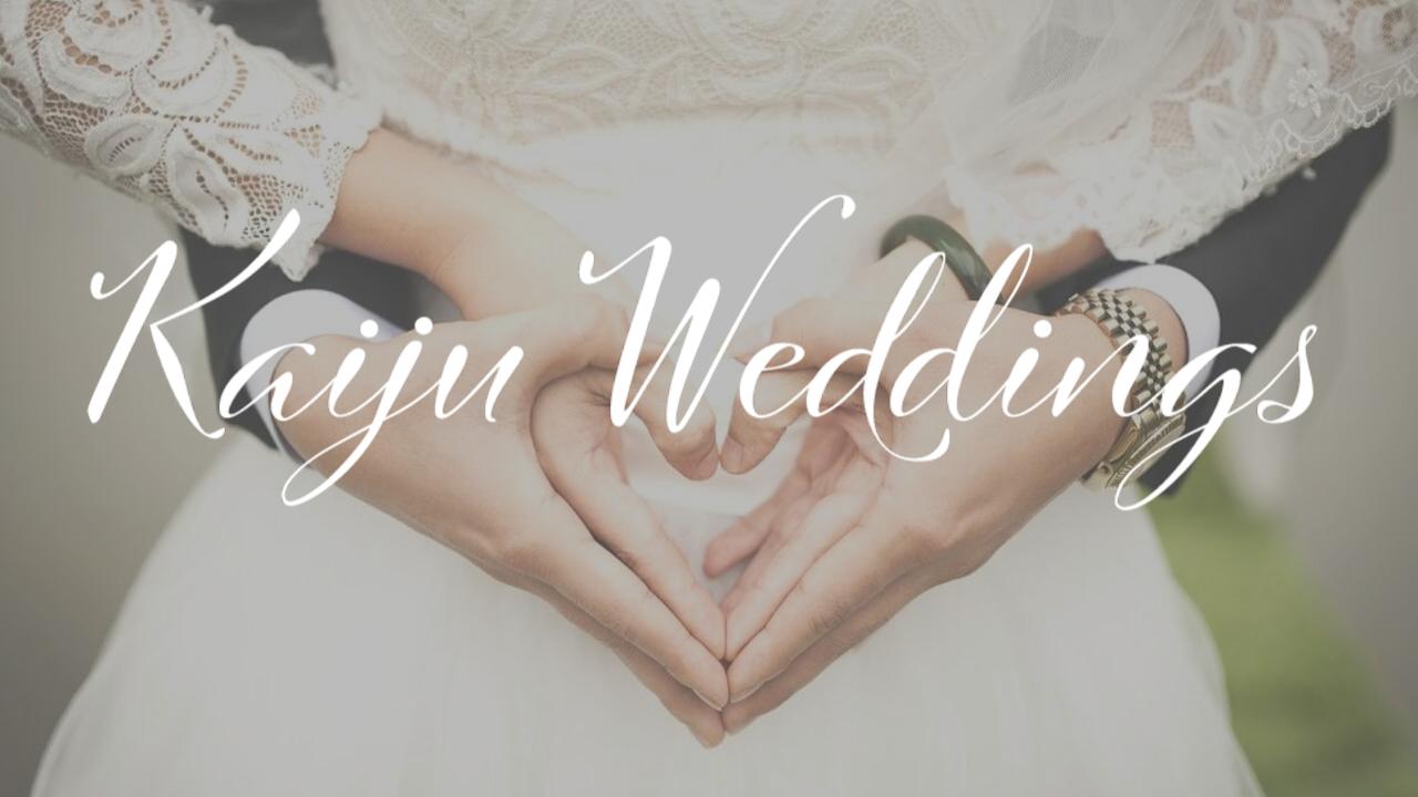 Thumbnail for Wedding Demo Reel